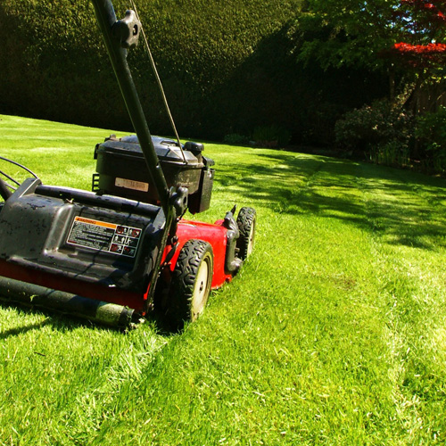 Dynamic Home Improvements Ltd provide expert lawn care as part of their garden maintenance in Somerset service